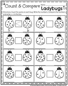 May Kindergarten Worksheets - Count and compare ladybugs.