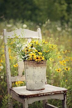 Love this rustic pail of wild flowers!Rustic vintage chair perfect place to display this arrangement of flowers! Love Flowers, Wild Flowers, Beautiful Flowers, Bouquet Champetre, Down On The Farm, Garden Chairs, Yard Art, Container Gardening, Outdoor Gardens