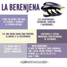 5 Propiedades de la Berenjena.