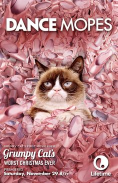 What happens when you add Dance Moms + Grumpy Cat? You get Dance Mopes.