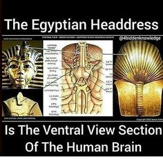 Would be nice if the words were turned right side up. Ancient Aliens, Ancient Egypt, Ancient History, Black History Facts, Strange History, Knowledge And Wisdom, Egyptian Art, Egyptian Drawings, Egyptian Symbols