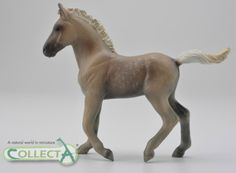 CollectA 2017 Rocky Mountain Foal – Chocolate 88799
