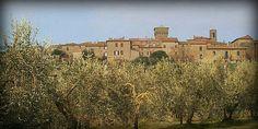 Montepulciano ⊙ around Rigomagno