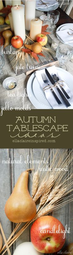 Lovely Autumn Tablescape using vintage and natural elements by Ella Claire.
