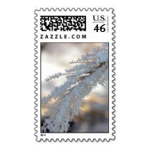 Frost Feathers Stamp