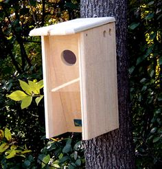 Starling Resistant Flicker Birdhouse