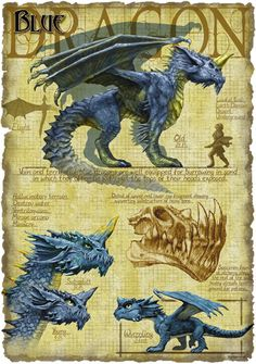 Blue Dragon by Richard Sardinha
