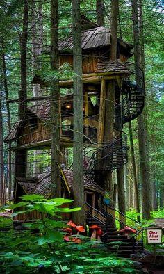 Somptueuse cabane à plusieurs niveaux