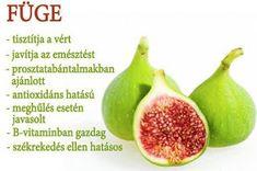 Életmód cikkek : Zöldség és gyümölcsök hatásai Health Eating, Health And Nutrition, Superfoods, Healthy Lifestyle, The Cure, Vitamins, Food And Drink, Medical, Herbs
