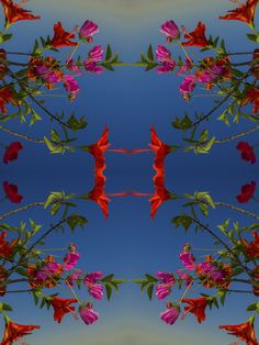 Visionaire Blog TODD EBERLE'S FLOWERS (FOR RICHARD)