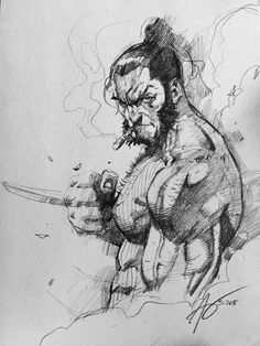 Wolverine by Rudy Ao *