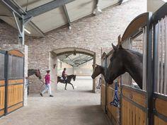 Röwer & Rüb horse stalls