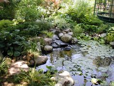 Landscape Water Features | Alexander & Sons Water Feature – Fall Landscaping Services Portfolio
