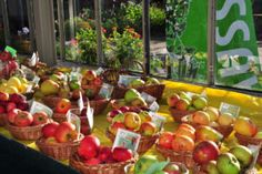 Ausstellung: Apfelwoche im Botanischen Garten. Vom 21. bis 25. September dreht sich alles rund um die Vitaminbombe. Zwischen 10 und 17 Uhr kann man sich über ca. 150 verschiedenen Sorten informieren. (Bild: FAU/Walter Welß)
