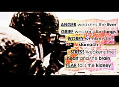 Anger weakens the liver Grief weakens the lungs Worry weakens the stomach Stress weakens the heart and the brain Fear fails the kidney Kidney Health, Lungs, Natural Healing, Grief, No Worries, Fails, Verses, Brain, Sayings