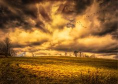 Two flocks of wild Canadian Geese fly south over the mountain field before a turbulent sky.    Once Last Fall - Original fine art landscape skyscape photography by Bob Orsillo.  Copyright (c)Bob Orsillo / http://orsillo.com - All Rights Reserved.  Buy art online.  Buy photography online