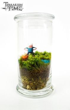 Geeky Terrariums http://geekxgirls.com/article.php?ID=3050