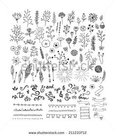 Hand Drawn vintage floral elements. Swirls, laurels, frames, arrows, leaves, feathers, dividers, branches, banners and curls.