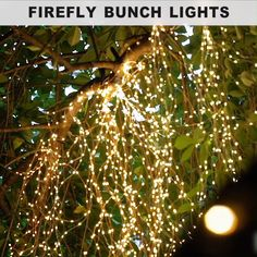 Firefly Bunch Lights ✨ How pretty! Our Firefly Bunch Lights have a flexible, bendable wire with warm white micro LEDs so you can create magical lighted designs. Simply shape, bend and twist them however you like! String Lights Outdoor, Outdoor Lighting, Office Lighting, Bedroom Lighting, Christmas Centerpieces, Christmas Decorations, Graduation Centerpiece, Christmas Lights, Christmas Diy