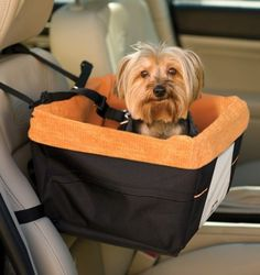 Know someone who always roadtrips with their small dog? This would be a great gift idea! #smalldogs #giftideas #travel