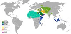 Sunnis and Shia