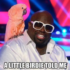 """""""A little birdie told me."""" #TheVoice"""