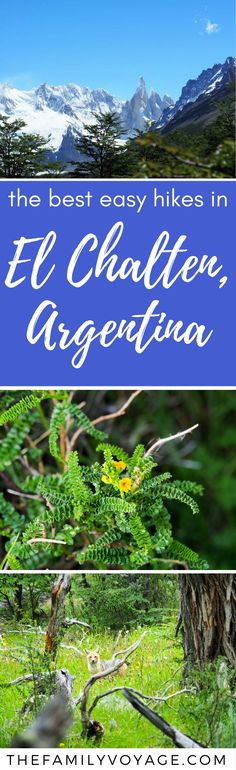 If you're planning a trip to El Chalten, Argentina it doesn't have to all be about grueling days on the trail. Check out our guide for the best easy (even family-friendly!) hikes in El Chalten, plus where to stay, what to eat, and all the logistics you need to know. #hiking #elchalten #patagonia #argentina #adventuretravel #familytravel