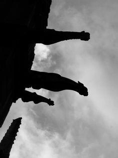 *** #Gargoyles of #NotreDame ***