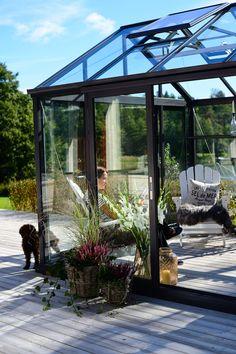 Växthuset Green Room från Willab Garden