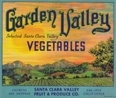 Vintage San Jose crate label