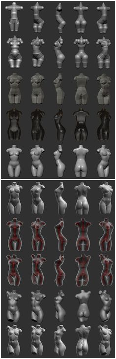 Bone 26 collected to the tutorial Zbrush Anatomy, Anatomy Drawing, Zbrush Character, Character Modeling, 3d Character, Zbrush Tutorial, 3d Tutorial, Figure Drawing Reference, Anatomy Reference