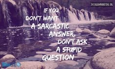 #stupidquestions #sarcasticanswer  Instagram @martinhosner #followme
