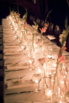 So elegant The Celebration ‹ Tropical OccasionsTropical Occasions