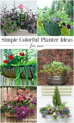 Flower planter ideas that are simple and colorful using easy-to-find flowers and unique containers.