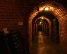 bollinger champagner: synonym für spitzenchampagner – sinnbild, Einladungen