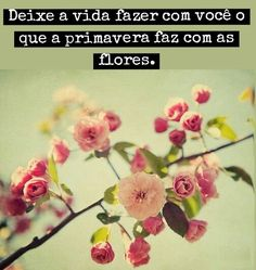 #frases #primavera #vida #flores