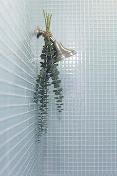 great shower tip - hang eucalyptus from the showerhead with twine. when you shower, the steam rises up and releases the scent - makes for a relaxing shower (and good for those colds!). also: love the glass mosaics
