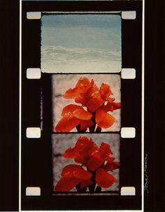 "Jonas Mekas, ""From Jerome Hill's window, CASSIS, 1966"" CIBA print 35.4x27.4cm"