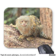 Mouse mat. marmoset pygmé. photographs mouse pad
