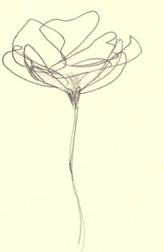 Blind Contour Abstract Pencil Drawing Art Print  Flower by ARTseas, $25.00