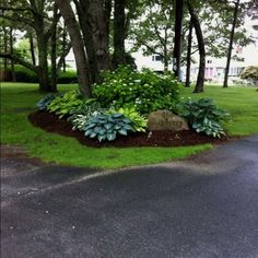 Nan Scott saved to Landscapetreetside hostas. gorgeous. Love the rock with address engraving. Could be a great way to display our address on the side of our corner lot. #backyard #landscapedesign #landscaping