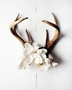 deer antlers with flowers - Google Search