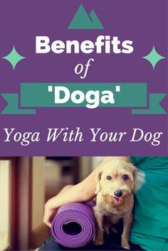 Benefits of Doga: Yo