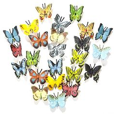 Live Butterfly Kit: 10 Painted Lady Caterpillars FREE Certificate ...
