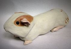 Jasmine is a guinea pig with rhythm! She dances ballet, tap, ballroom, jazz and belly :) Piggy Banks, Guinea Pigs, Jasmine, Ballet Dance, Sculpting, Jazz, Dance Ballet, Whittling, Sculpture