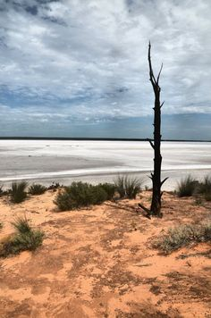 Salt lake at Dundas, near Norseman, Western Australia