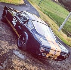 Rent a racer, 1966 Shelby H - Auto 2019 Ford Mustang Fastback, Ford Mustang Shelby, Mustang Cars, Ford Mustangs, Shelby Gt500, Mustang 1966, Hot Rods, Vintage Mustang, Classic Mustang