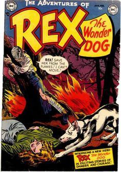 Rex the Wonder Dig no. 1