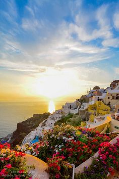 Sunset + Flowers in Oia, Santorini. It's truly this spectacular....seeing it in person it's just so much more ! One wonders How can anything be this beautiful?