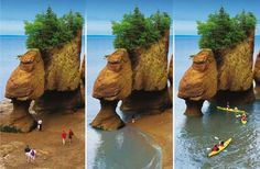 The Hopewell Rocks are flower pot rock formations formed from centuries of erosion from the tides in the Bay of Fundy in New Brunswick, Canada. You can walk on the ocean floor and later kayak around the rocks. East Coast Travel, East Coast Road Trip, The Places Youll Go, Places To See, East Coast Canada, Hopewell Rocks, Seaside Inn, New Seven Wonders, New Brunswick Canada
